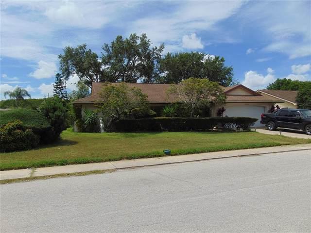12226 Meadowbrook Lane, Hudson, FL 34667 (MLS #U8128701) :: CGY Realty