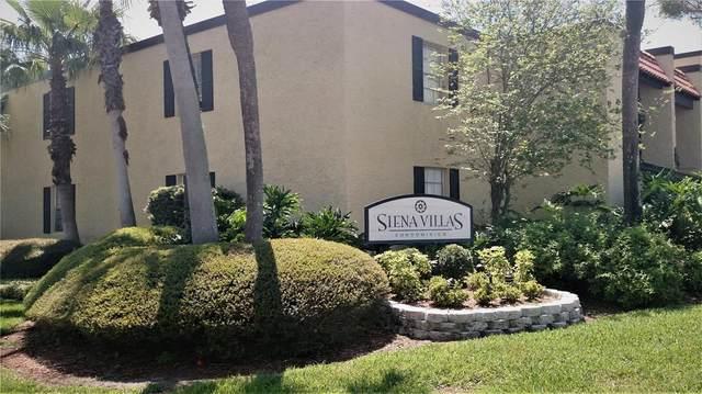 Tampa, FL 33609 :: Heckler Realty