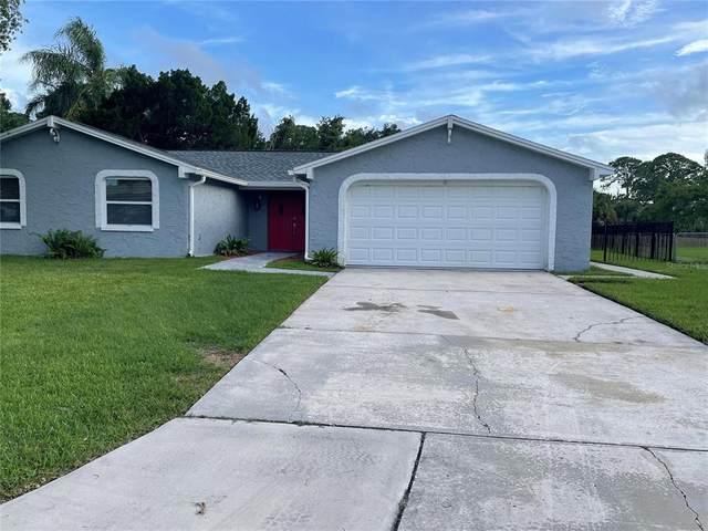 6036 Westport Drive, Port Richey, FL 34668 (MLS #U8128961) :: Rabell Realty Group