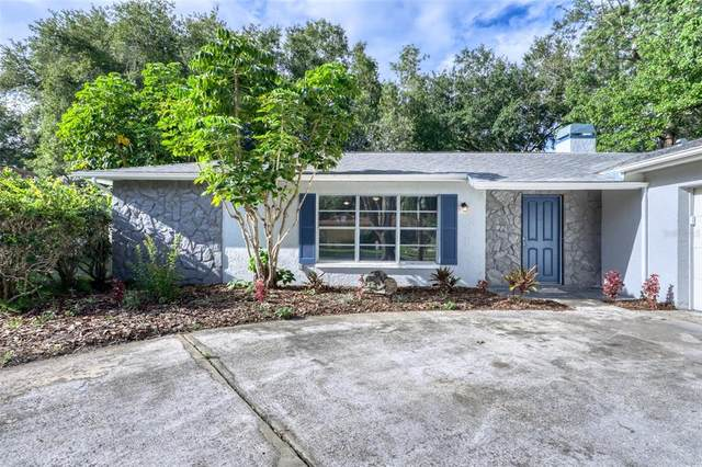 11774 111TH Terrace, Seminole, FL 33778 (MLS #U8129046) :: The Hustle and Heart Group