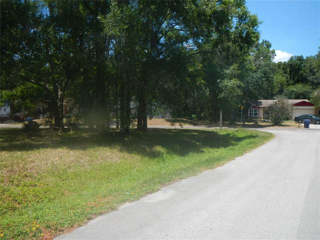 23734 Forest View Drive, Land O Lakes, FL 34639 (MLS #U8129085) :: Your Florida House Team