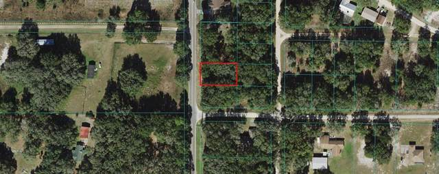 SW 140TH Avenue, Dunnellon, FL 34432 (MLS #U8129515) :: Zarghami Group