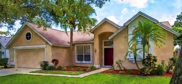 3013 Windridge Oaks Drive, Palm Harbor, FL 34684 (MLS #U8129641) :: RE/MAX Marketing Specialists
