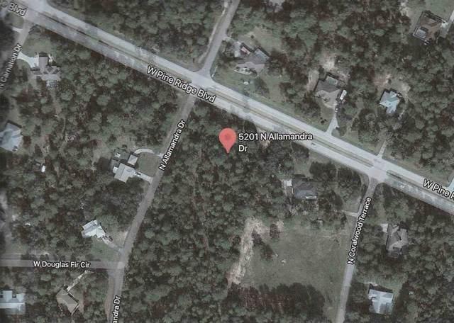 5201 N Allamandra Drive, Beverly Hills, FL 34465 (MLS #U8129794) :: Everlane Realty
