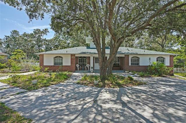18707 East Road, Hudson, FL 34667 (MLS #U8129797) :: Zarghami Group