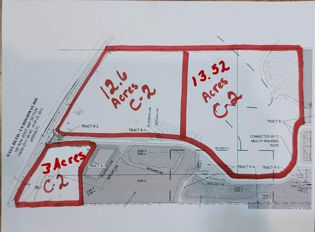 12.6 Acres River Run, Zephyrhills, FL 33540 (MLS #U8129923) :: Prestige Home Realty