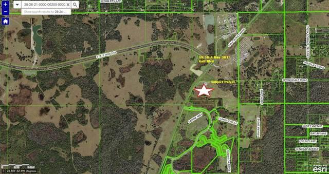 27 Acres River Run, Zephyrhills, FL 33540 (MLS #U8129931) :: Prestige Home Realty