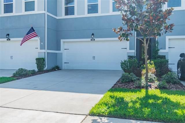 17855 Stella Moon Place, Lutz, FL 33558 (MLS #U8129943) :: Realty Executives