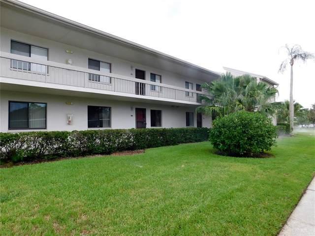 117 Caryl Way, Oldsmar, FL 34677 (MLS #U8129969) :: RE/MAX Marketing Specialists