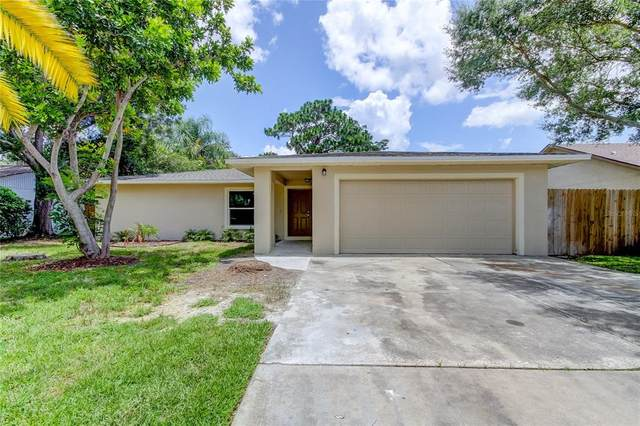 1875 Allendale Drive, Clearwater, FL 33760 (MLS #U8130011) :: MavRealty