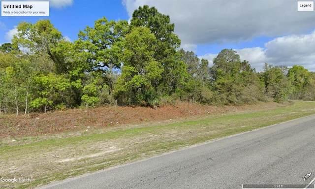 0 Little Road, Hudson, FL 34667 (MLS #U8130222) :: Sarasota Gulf Coast Realtors