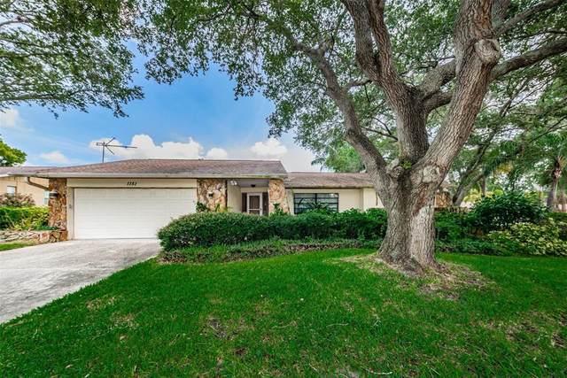 1151 Lemon Tree Lane, Palm Harbor, FL 34683 (MLS #U8130261) :: The Curlings Group