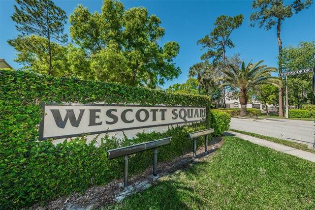 3166 Jademoor Circle, Palm Harbor, FL 34685 (MLS #U8130300) :: Delgado Home Team at Keller Williams