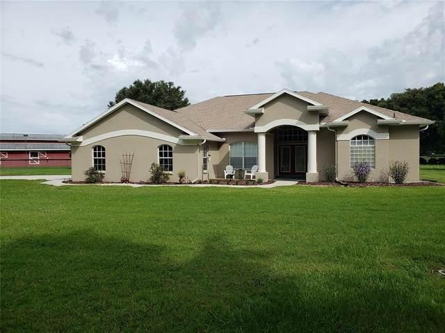 17049 Rustling Wind Road, Brooksville, FL 34604 (MLS #U8130317) :: Everlane Realty