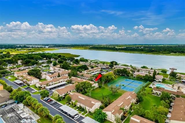 9209 Seminole Boulevard #207, Seminole, FL 33772 (MLS #U8130341) :: Realty Executives