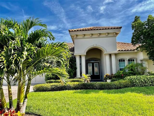 461 Kali Court, Palm Harbor, FL 34683 (MLS #U8130464) :: Everlane Realty
