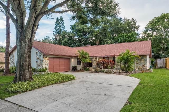 5012 Lake Valencia Boulevard E, Palm Harbor, FL 34684 (MLS #U8130471) :: RE/MAX Marketing Specialists