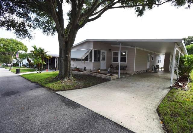93 Jacaranda Drive, Safety Harbor, FL 34695 (MLS #U8130496) :: Vacasa Real Estate