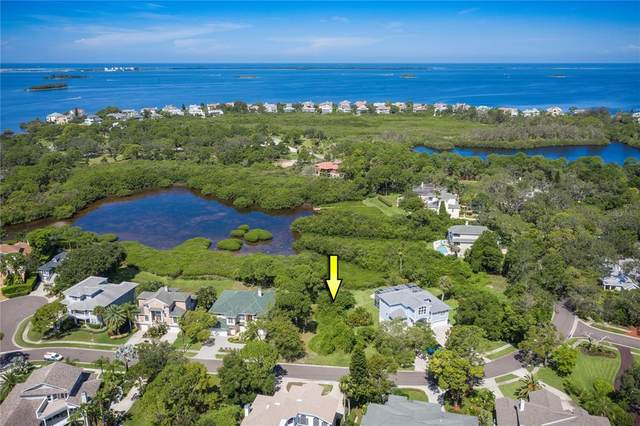 Sanctuary Drive, Crystal Beach, FL 34681 (MLS #U8130614) :: RE/MAX Elite Realty