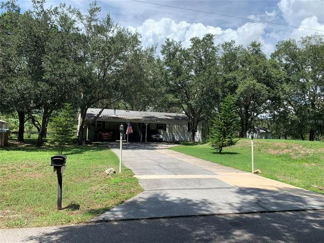 10617 Tami Trail, Hudson, FL 34669 (MLS #U8130646) :: Zarghami Group