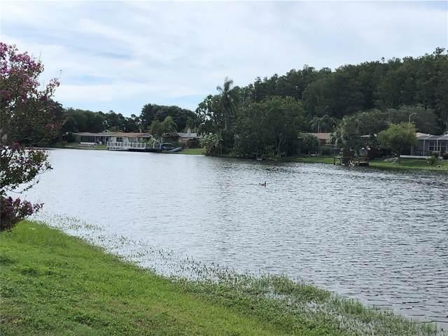 7211 Ashwood Drive, Port Richey, FL 34668 (MLS #U8130654) :: Your Florida House Team