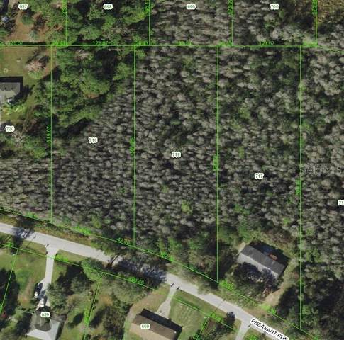 Pheasant Run, Zephyrhills, FL 33544 (MLS #U8130687) :: Premium Properties Real Estate Services