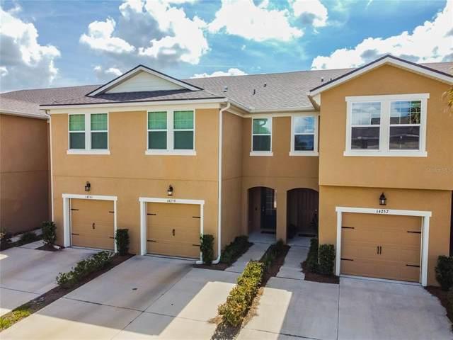 14259 Damselfly Drive, Tampa, FL 33625 (MLS #U8130741) :: Zarghami Group