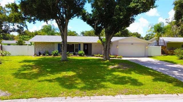 1891 Oak Park Drive S, Clearwater, FL 33764 (MLS #U8130798) :: Zarghami Group