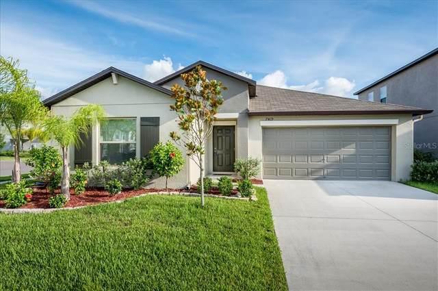 7419 Rosy Periwinkle Court, Tampa, FL 33619 (MLS #U8130807) :: Bridge Realty Group