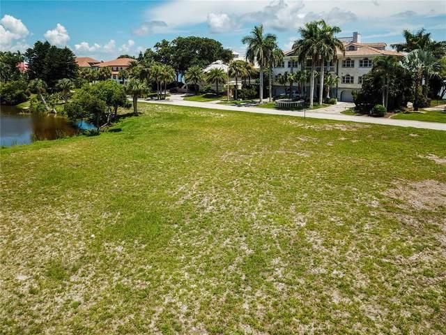 61ST Avenue S, St Petersburg, FL 33715 (MLS #U8130811) :: Baird Realty Group