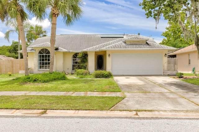 4701 Meadowsweet Court, New Port Richey, FL 34653 (MLS #U8130849) :: Frankenstein Home Team