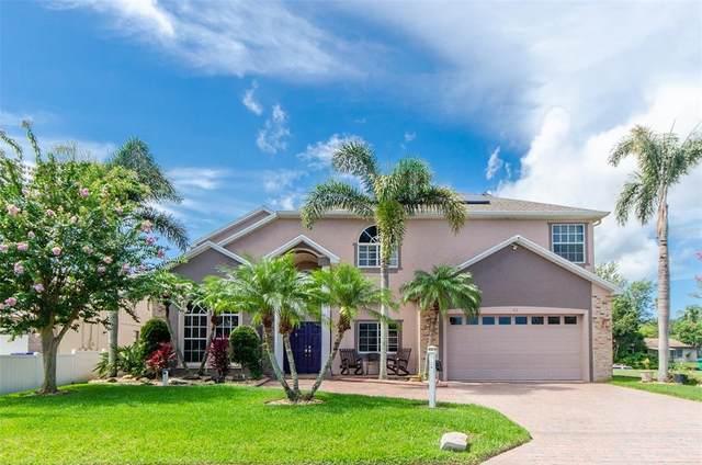 41 Cypress Drive, Palm Harbor, FL 34684 (MLS #U8130896) :: RE/MAX Marketing Specialists
