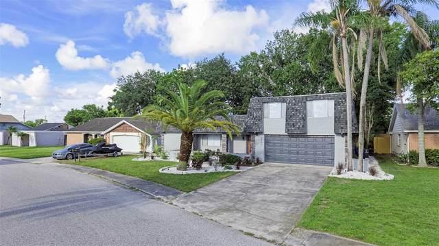 3352 Springfield Drive, Holiday, FL 34691 (MLS #U8130899) :: The Light Team