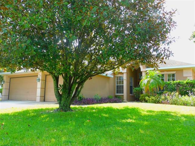 1232 Blackrush Drive, Tarpon Springs, FL 34689 (MLS #U8130910) :: Realty Executives