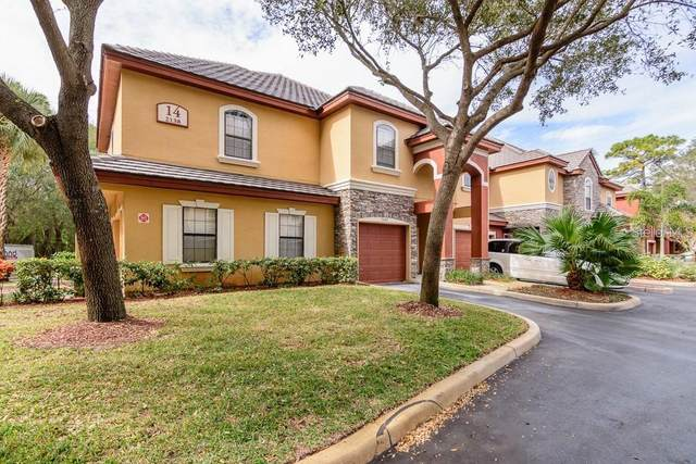 2138 Chianti Place #1411, Palm Harbor, FL 34683 (MLS #U8130981) :: Florida Real Estate Sellers at Keller Williams Realty