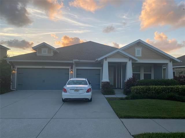 6822 Scenic Drive, Apollo Beach, FL 33572 (MLS #U8131015) :: Medway Realty