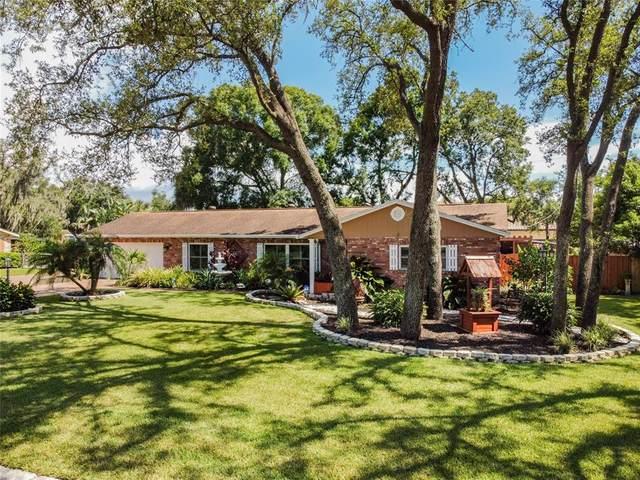 615 Hitching Post Drive, Brandon, FL 33511 (MLS #U8131050) :: Young Real Estate