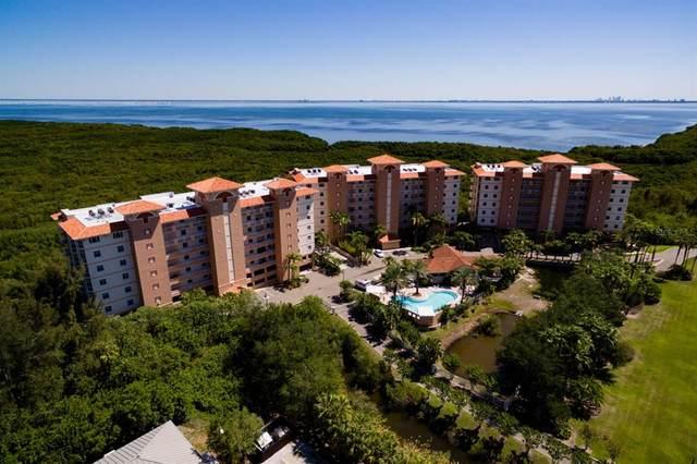 12055 Gandy Boulevard N #235, St Petersburg, FL 33702 (MLS #U8131067) :: The Hustle and Heart Group