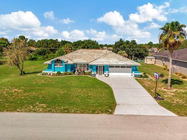 179 Dandelion Court, Spring Hill, FL 34606 (MLS #U8131072) :: Prestige Home Realty