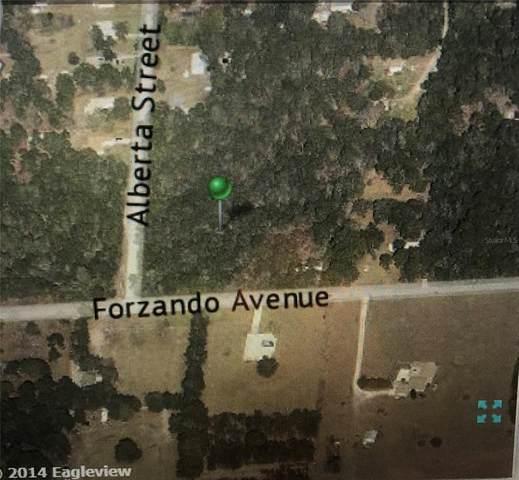 54 Forzando Avenue, Brooksville, FL 34604 (MLS #U8131109) :: Aybar Homes