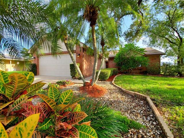 3901 108TH Avenue N, Clearwater, FL 33762 (MLS #U8131123) :: The Hustle and Heart Group