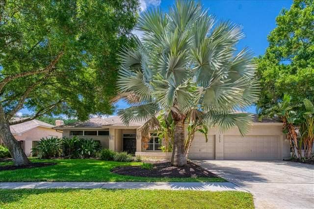 3020 Bradford Circle, Palm Harbor, FL 34685 (MLS #U8131133) :: RE/MAX Marketing Specialists