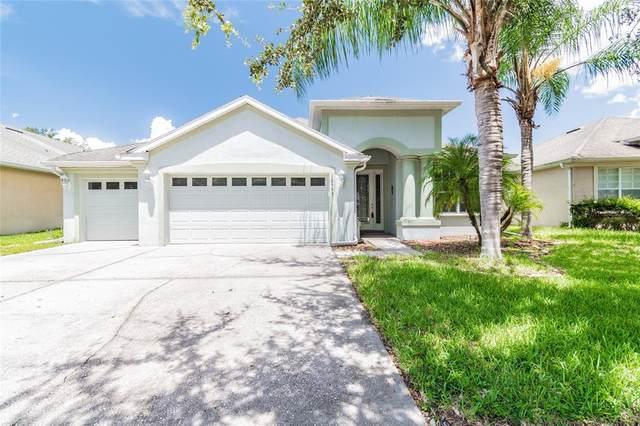 10555 Deerberry Drive, Land O Lakes, FL 34638 (MLS #U8131153) :: Zarghami Group