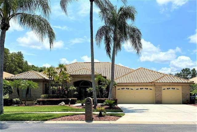 985 Carstairs Court, Tarpon Springs, FL 34688 (MLS #U8131166) :: Zarghami Group