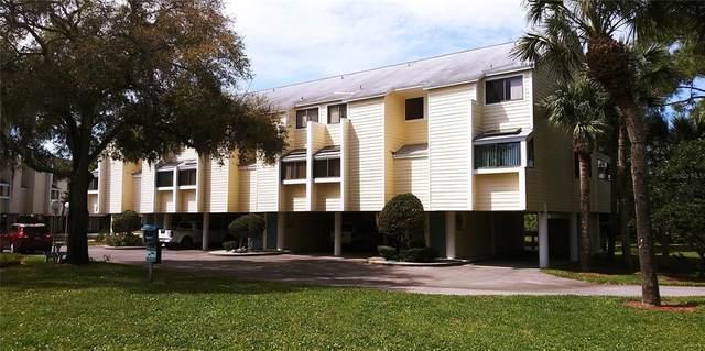 1500 Sunset Road A5, Tarpon Springs, FL 34689 (MLS #U8131175) :: Zarghami Group