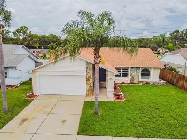 8231 Matthew Drive, New Port Richey, FL 34653 (MLS #U8131180) :: Aybar Homes