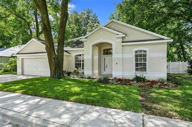2107 Fawn Meadow Drive, Valrico, FL 33594 (MLS #U8131223) :: Zarghami Group