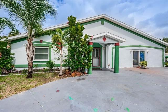 519 S Levis Avenue, Tarpon Springs, FL 34689 (MLS #U8131227) :: The Price Group