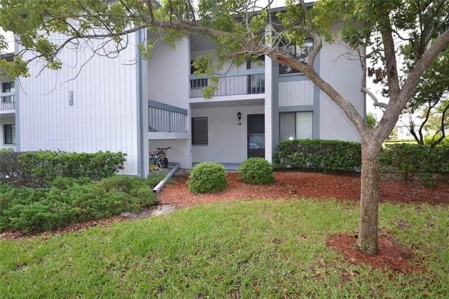 101 Martha Lane #4, Oldsmar, FL 34677 (MLS #U8131231) :: RE/MAX Marketing Specialists