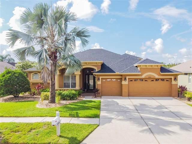 30406 Colehaven Court, Wesley Chapel, FL 33543 (MLS #U8131279) :: Vacasa Real Estate